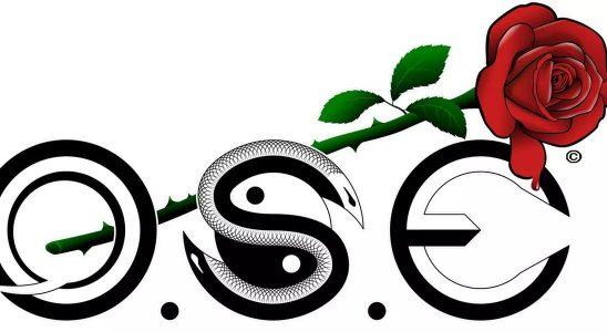 O.S.E (OVERCOME.SURVIVAL.EXPERIENCE)